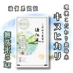 【令和2年産】 滋賀県産 環境こだわり米 キヌヒカリ 無洗米 5kg