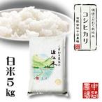 【令和3年産】 滋賀県産 環境こだわり米 コシヒカリ 白米 5kg