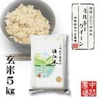 【令和3年産】 滋賀県産 環境こだわり米 ミルキークイーン 玄米 5kg